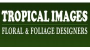 Tropical Images